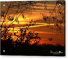 Acrylic Print featuring the photograph Sunrise In Tennessee by EricaMaxine  Price