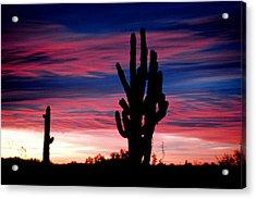 Sunrise Acrylic Print by John Gee