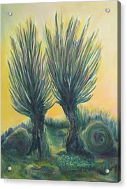 Magic Sunrise Acrylic Print by Miriam