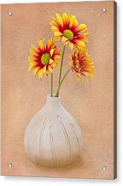 Sunrise Mums Acrylic Print by Tom Mc Nemar