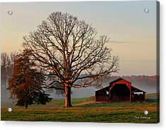 Sunrise Oak Red Barn Misty Morning Acrylic Print by Reid Callaway