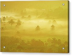 Sunrise On Mist In Roseau Valley- St Lucia Acrylic Print by Chester Williams