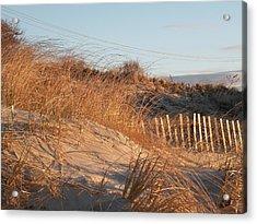 Sunrise On The Dunes Acrylic Print by Donald Cameron