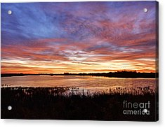 Acrylic Print featuring the photograph Sunrise Over The Marsh by Larry Ricker