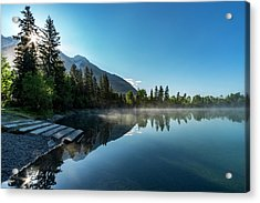 Acrylic Print featuring the photograph Sunrise Over The Mountain And Through The Tree by Darcy Michaelchuk