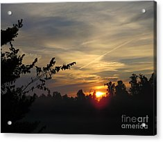 Sunrise Over The Trees Acrylic Print