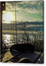 Sunrise Sea Shells Acrylic Print