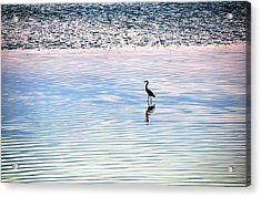 'sunrise Serenity' Acrylic Print by Joanne Brown