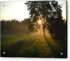 Sunrise Shadows Through Fog Acrylic Print