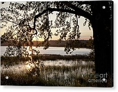 Acrylic Print featuring the photograph Sunrise Silhouette by Susan Cole Kelly