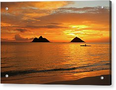 Sunrise Solo Acrylic Print by Brian Governale