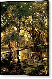 Acrylic Print featuring the photograph Sunrise Springs by Paul Cutright