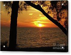 Sunset 2 Acrylic Print by Megan Cohen