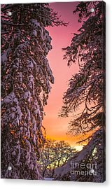 Sunset After Snow Acrylic Print by Mike Ste Marie