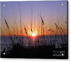 Sunset And Seaoats Acrylic Print by Terri Mills