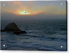 Sunset With The Bird Acrylic Print