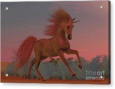 Sunset Arabian Unicorn Acrylic Print
