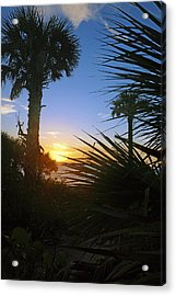 Sunset At Bearefoot Beach In Naples Acrylic Print