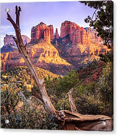 Sunset At Cathedral Rock Acrylic Print by Alexey Stiop
