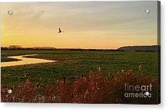 Sunset At Holkam Acrylic Print by John Edwards