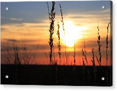 Sunset At Monument Hill Acrylic Print by Toni Hopper