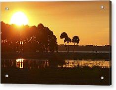 Sunset At Myakka River State Park In Florida, Usa Acrylic Print
