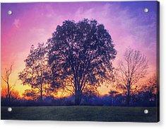 Sunset At Retzer Nature Center Acrylic Print by Jennifer Rondinelli Reilly - Fine Art Photography