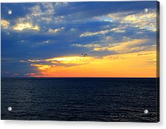 Acrylic Print featuring the photograph Sunset At Sail Away by Shelley Neff