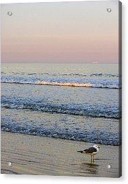 Sunset Atlantic Beach Florida Acrylic Print by Ann Tracy