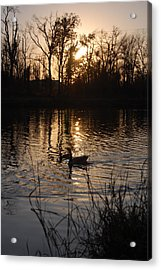 Sunset Acrylic Print by Audrey Venute