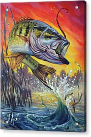 Sunset Bass Acrylic Print by Tom Dauria