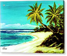 Sunset Beach Hawaiian #113 Acrylic Print by Donald k Hall