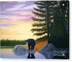 Sunset Bear Acrylic Print