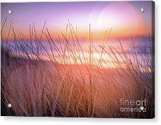 Sunset Bokeh Acrylic Print by Inger Vaa Eriksen