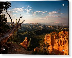 Acrylic Print featuring the photograph Sunset Bryce by Rebecca Hiatt