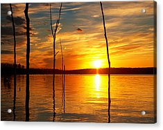 Acrylic Print featuring the photograph Sunset By The Water by Angel Cher