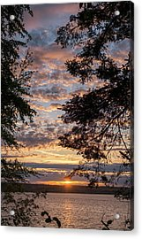 Sunset Caressed By Tree Branch Acrylic Print by Mary Lee Dereske