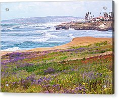 Sunset Cliffs In Spring Acrylic Print