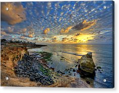 Sunset Cliffs With Brown Pelicans Acrylic Print