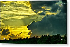 Sunset Cloud Animal Acrylic Print by Edward Myers