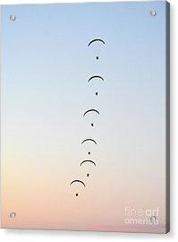 Sunset Dancing Acrylic Print