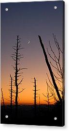 Sunset Acrylic Print