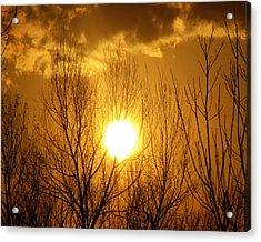 Sunset Acrylic Print by Dottie Dees