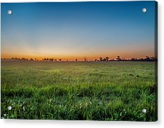 Sunset Fields Acrylic Print by Az Jackson
