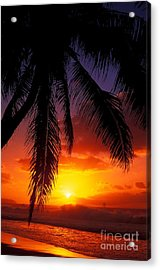 Sunset From The Beach Acrylic Print by Vince Cavataio - Printscapes