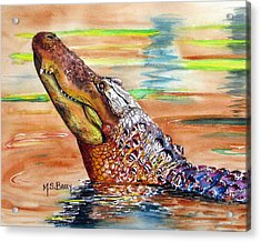 Sunset Gator Acrylic Print by Maria Barry