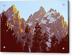 Sunset Gold Tetons Nat Acrylic Print by Alan Lenk