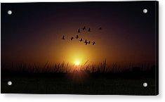 Sunset Highway Acrylic Print by Mark Andrew Thomas