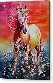 Sunset Horse Acrylic Print by Maria Barry