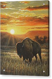 Sunset In Bison Country Acrylic Print by Kim Lockman